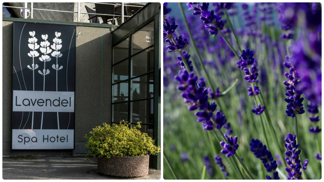 8ded78006b2 Lavendel Spa Hotel asub Tallinna külje all, looduslikult kaunil Viimsi  poolsaarel. Kohisev meri ja kaunis supelrand jäävad hotellist vaid  10-minutilise ...